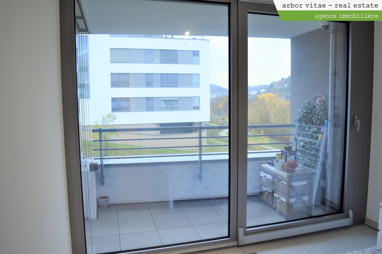 Dommeldange (Lux), Centre, 1161, 2 Bedrooms Bedrooms, ,Apartment,For Rent,Rue Chingiz T. Aitmatov ,1,1001